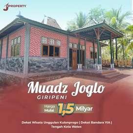 Peluang Investasi di Dekat Bandara Kulon Progo