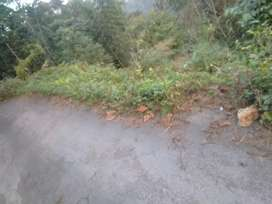 Land for sale low price
