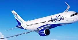 IndiGo Airlines have job vacancy for Ground staff/ticketing/cabin crew