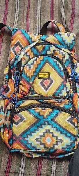 Ladies bag pithu
