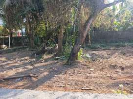 3 CENT RESIDENTIAL PLOT FOR SALE AT EDAPPALLY