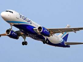 open interview for ground staff and air-ticketing indigo airlines