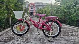 Sepeda anak wimcycle 16 inc