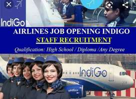 We Are Urgently Hiring For Tikceting Executive At Cochin Airport