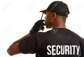 Wanted fresher security man in Kodambakkam