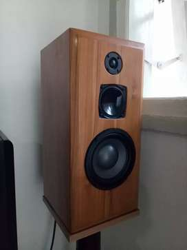 amplifier for home audio