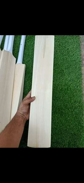 Cricket English Willow bats at wholesale prices