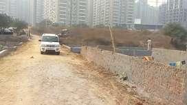 Plot sell Noidaसेक्ट143 metroसे 600 meterदूर sirf 14000/gaj 100 200गज