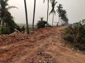 12000sft land gharabari yellow zone, Rs500/sqft