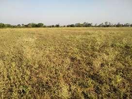5 एकड़ जमीन बेचना हैं बेगामगंज में फ़तेपुर रोड पर