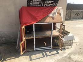 Selling new Cage suitable for Hens Parrots