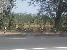 jual tanah 3,2 ha di brebes