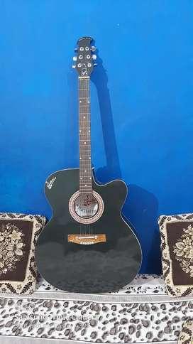 Musical instrument guitar