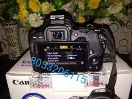 My Canon.         Camera.     200d