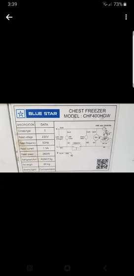 401L standard Blue star Deep freezer