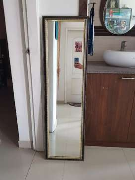 Wall mirror (15 inch x 50 inch) in excellent condition