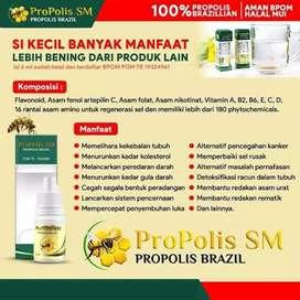 PROPOLIS SM BRAZIL