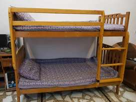 Bunk bed used