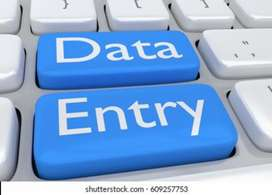 Data entry expert required