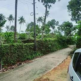 Kothamangalam vadattupara 3 acre( 1.80 acre document)tar road frontage