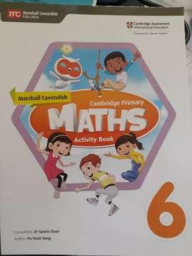 Maths activity book 6