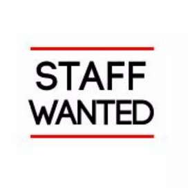 Lady staff with computer knowledge wanted.