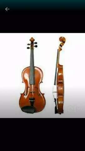 Need violin