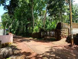 54 Cents Elevated land near Nellimmoodu 3kms from Vizhinjam