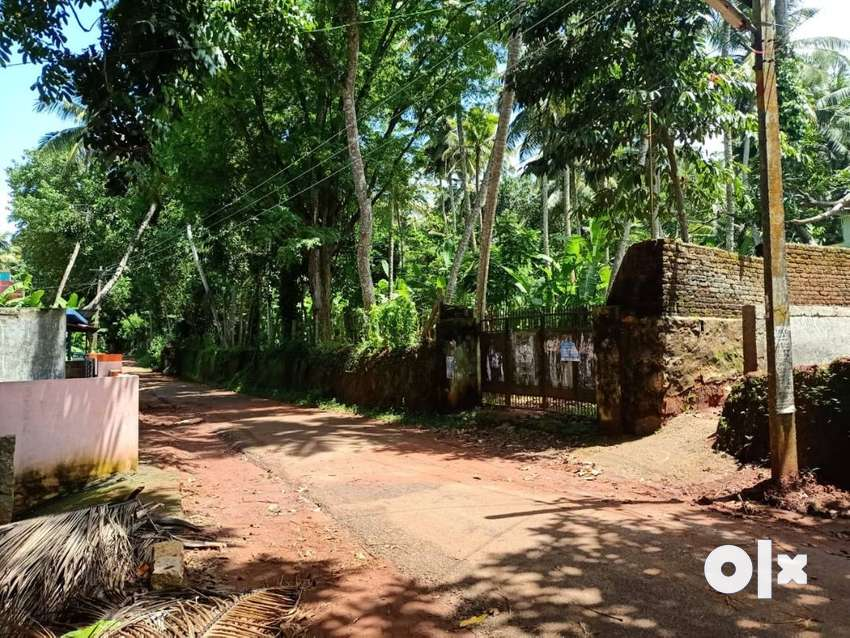 54 Cents Elevated land near Nellimmoodu 3kms from Vizhinjam 0