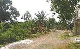 Jual Tanah murah di perum Putri Indah Tajung Udik Gunung Putri Bogor