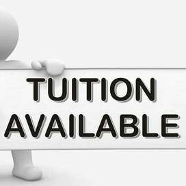 looking for tuition class within twin cities