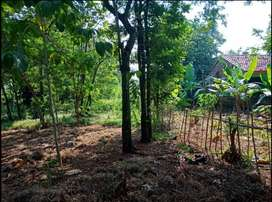 Dijual Tanah Kebun dekat Mini Zoo Leuleutikan Park Purwasari Karawang