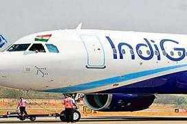 We are hiring for ground staff limited seats in Indigo Airlines