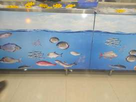 Leading Fish hypermarket in Thrissur looking for  Partner