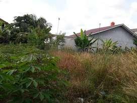 Tanah untuk rumah kos, jl bangau sakti panam UNRI, kota Pekanbaru