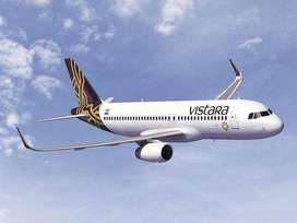Description Apply in Vistara Airline For various Post .  Helping and a