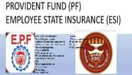 PF PENSION ESI professional services