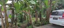 TANAH BANDUNGAN LT.190 SHM, MOBIL SIMPANGAN,COCOK UNTUL VILA/RUMAH/KBN