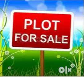 1200 * 2  plot  only  950/sq feet  diverted  well developed  colony
