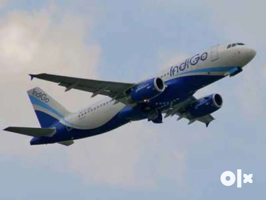 RECRUITMENT!!! NOW OPENS IN INDIGO AIRLINES JOIN US. 0