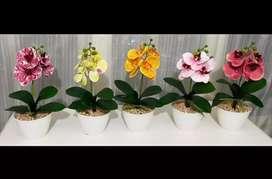 Rangkaian Bunga Anggrek Latex