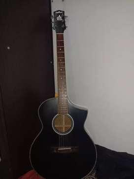 Gitar Artcoustic