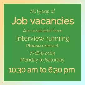Official jobs