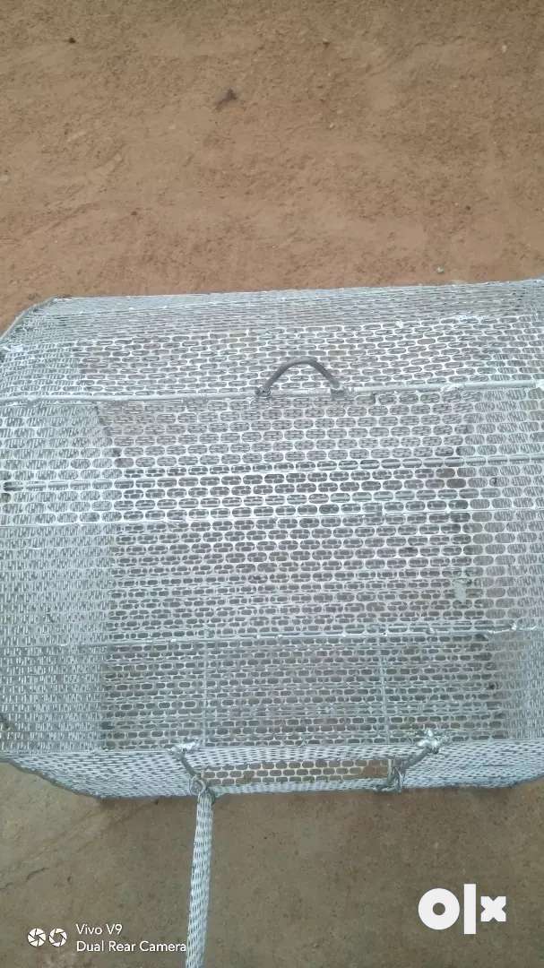 Cage new cage 5 days only use