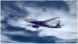Indigo Company Ground Staff Job Vacancy Airline Industry - Airport Job