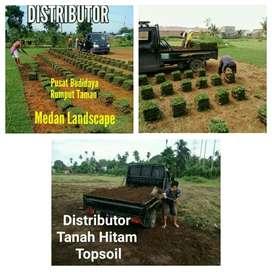 Distributor Rumput Taman
