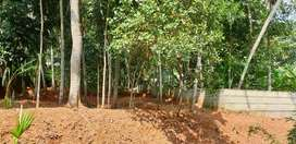 10 cents of land for sale in punnakkulam
