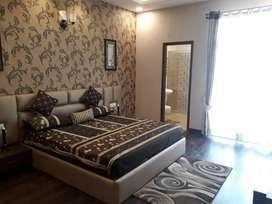 Spaciously Designed 2 BHK Apartment at 66 Ft Road, Jalandhar