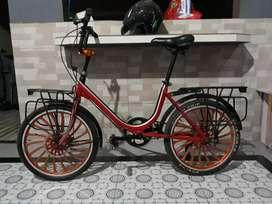 Sepeda Minion R20