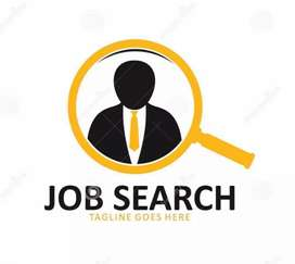 Urgent requirement for back office